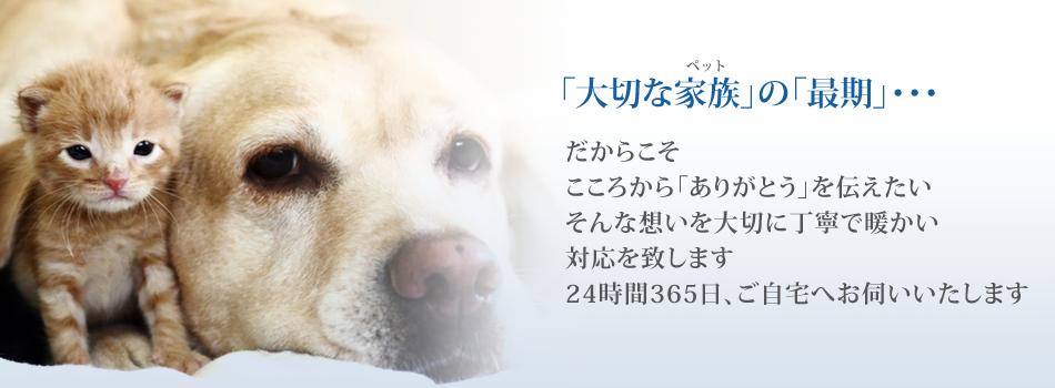 ペットセレモニーWAVY川崎支店